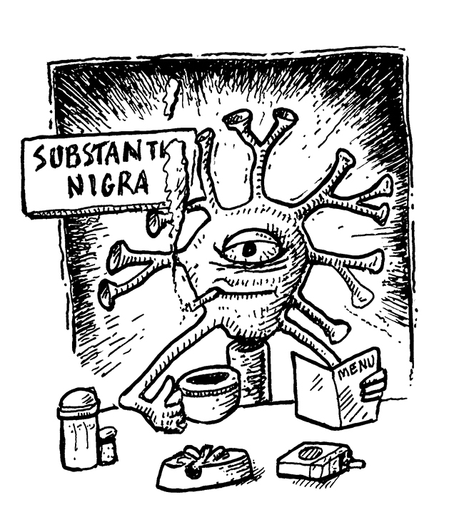 Down at the Substantia Nigra
